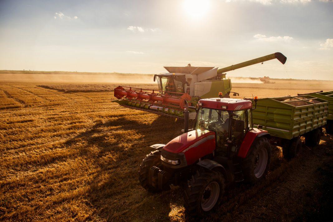 Industria agroalimentare: lavorazione del grano con mietitrebbia